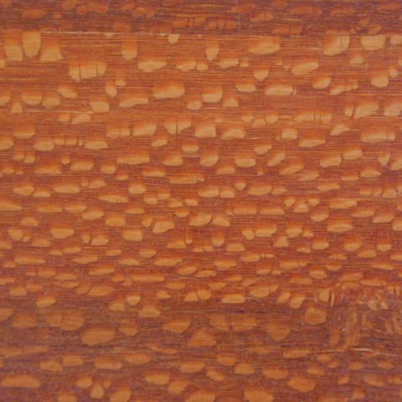 Fishtail Oak